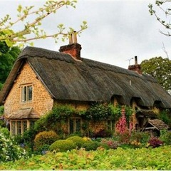 House thatch roof