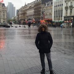Plave Brouckere, Brussels