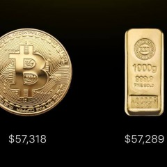 Bitcoin V Gold
